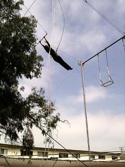 Carolyn Hennesy trapeze