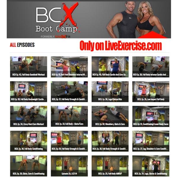BCX shows